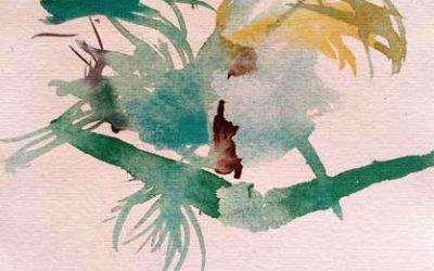 Acuarelas del jardín Botánico. Pintar y pasear